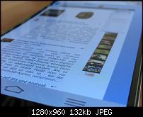 IMG 1174