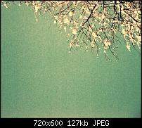 Android Wallpaper Sammlung-wallpaper97.jpg