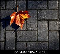 Android Wallpaper Sammlung-wallpaper88.jpg