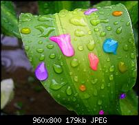 Android Wallpaper Sammlung-colorful_rain.jpg