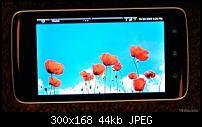 Video und Bilder zu erstem Dell-Androide-dell-android.jpg
