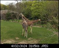 Kamera des iPhone SE-img_0161.jpg