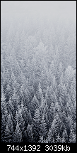 Der iPhone 6 Wallpaper Thread-2.png