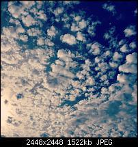 Fotoqualität des iPhone 6 Plus-img_0086.jpg