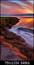 Der iPhone 6 Wallpaper Thread-nature-landscape-iphone-6-wallpaper-ilikewallpaper_com_750.jpg