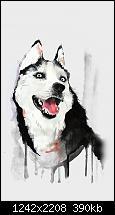 Der iPhone 6 Plus Wallpaper Thread-papers.co-ai25-happy-dog-husky-animal-illust-watercolor-34-iphone6-plus-wallpaper.jpg