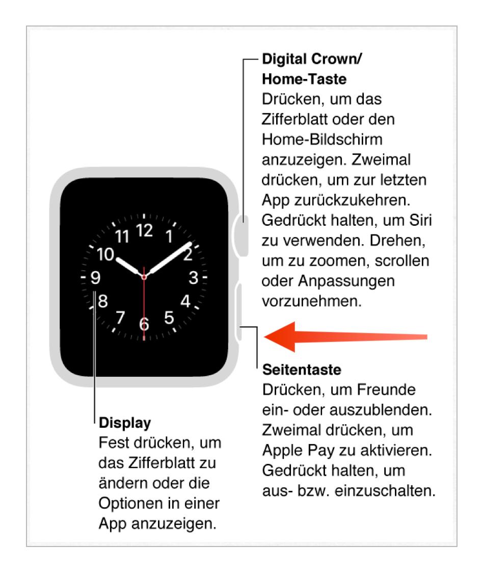 Tutorial: Nicht reagierende Apps auf der Apple Watch beenden-bild-1.png