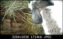 Blackberry Z10 Bilder und Videos der Kamera-img_00000008.jpg