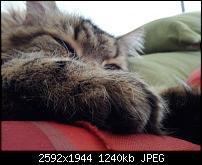 Geschossene Bilder mit dem Galaxy Nexus-2012-03-10-14.15.27.jpg