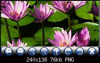 Altina A800 PNA-a800_photo2.png