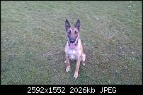 Bilder gemacht mit dem HTC Desire-imag0023.jpg