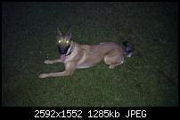 Bilder gemacht mit dem HTC Desire-imag0033.jpg