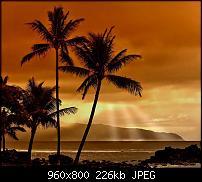 !!! Der GROSSE Wallpaper-Thread für das HTC Desire !-hawaii.jpg