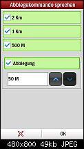 Copilot Live 8-screen01.jpg