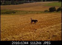 HTC Hero Kamerabilder-imag0027.jpg