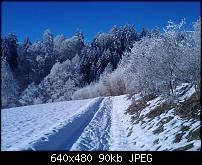 Kamera (Farbechtheit)-image_057a.jpg