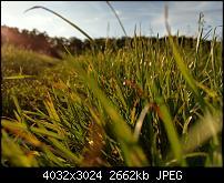 HTC U11 – Qualität der Fotos-imag0061.jpg