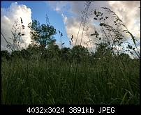 HTC U11 – Qualität der Fotos-imag0071.jpg