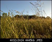 HTC U11 – Qualität der Fotos-imag0105.jpg