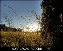 HTC U11 – Qualität der Fotos-imag0110.jpg