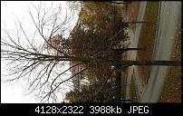 Bilderqualität des Honor 6 (postet Eure schönen Fotos hier)-2014-10-11-07.49.59.jpg