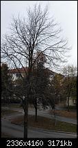 Bilderqualität des Honor 6 (postet Eure schönen Fotos hier)-2014-10-11-10.02.01.jpg
