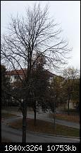 Bilderqualität des Honor 6 (postet Eure schönen Fotos hier)-2014-10-11-10.02.11.jpg