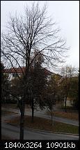 Bilderqualität des Honor 6 (postet Eure schönen Fotos hier)-2014-10-11-10.02.13.jpg
