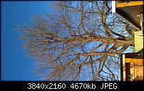 Huawei Mate 8 - Fotoqualität-wp_20170127_13_53_26_raw.jpg