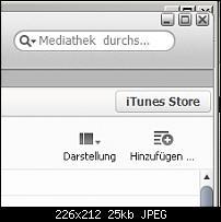 [iTunes 11] Fenster grösse passt nicht-benutzerdefinierte-ansicht.jpg