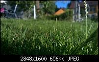 Nokia Lumia 930 - Bilder mit der Kamera und Meinungen zur Qualität-wp_20140714_19_40_31_refocus.jpg