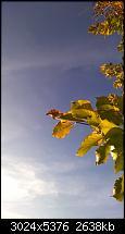 Nokia Lumia 930 - Bilder mit der Kamera und Meinungen zur Qualität-wp_20141102_14_53_41_pro.jpg