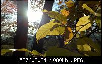 Nokia Lumia 930 - Bilder mit der Kamera und Meinungen zur Qualität-wp_20141102_14_54_49_pro.jpg