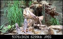 Kleiner Kamera Vergleich Lumia 1020 - 950 XL - 930 & iPhone SE-wp_20160423_11_25_28_pro.jpg