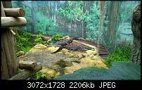 Kleiner Kamera Vergleich Lumia 1020 - 950 XL - 930 & iPhone SE-wp_20160423_11_22_19_pro.jpg