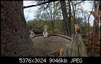 Kleiner Kamera Vergleich Lumia 1020 - 950 XL - 930 & iPhone SE-wp_20160423_11_48_46_pro_li.jpg
