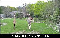Kleiner Kamera Vergleich Lumia 1020 - 950 XL - 930 & iPhone SE-wp_20160423_12_15_15_pro_li.jpg