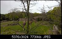 Kleiner Kamera Vergleich Lumia 1020 - 950 XL - 930 & iPhone SE-wp_20160423_12_17_11_pro_li.jpg