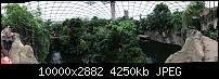 Kleiner Kamera Vergleich Lumia 1020 - 950 XL - 930 & iPhone SE-img_0167.jpg