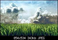Motorola Milestone Wallpaper / Hintergrundbilder-lawninsky1680x1050tl6.jpg