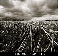 Motorola Milestone Wallpaper / Hintergrundbilder-dramatic-sky.jpg