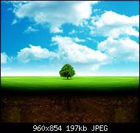 Motorola Milestone Wallpaper / Hintergrundbilder-wall_008.jpg