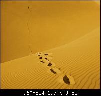 Motorola Milestone Wallpaper / Hintergrundbilder-wall_014.jpg