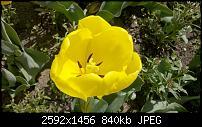-2010-04-19_11-37-42_378_stuttgart.jpg