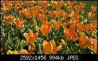 -2010-04-19_11-38-11_258_stuttgart.jpg