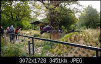 Nokia Lumia 1020 - Fotoqualität-wp_20130922_14_18_44_pro.jpg
