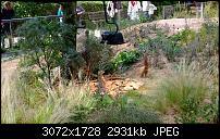 Nokia Lumia 1020 - Fotoqualität-wp_20130922_14_19_53_pro.jpg