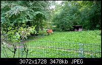 Nokia Lumia 1020 - Fotoqualität-wp_20130922_17_44_11_pro.jpg