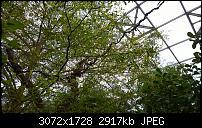 Nokia Lumia 1020 - Fotoqualität-wp_20160423_15_28_43_pro.jpg