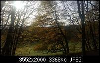 Nokia Lumia 820 – Fotoqualität-wp_20121111_001.jpg
